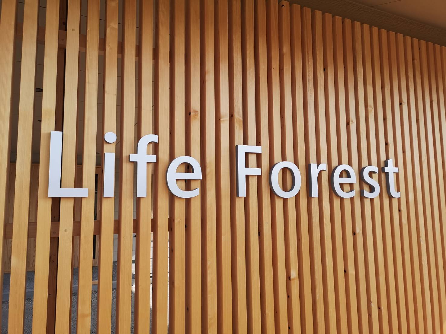 Life Forest